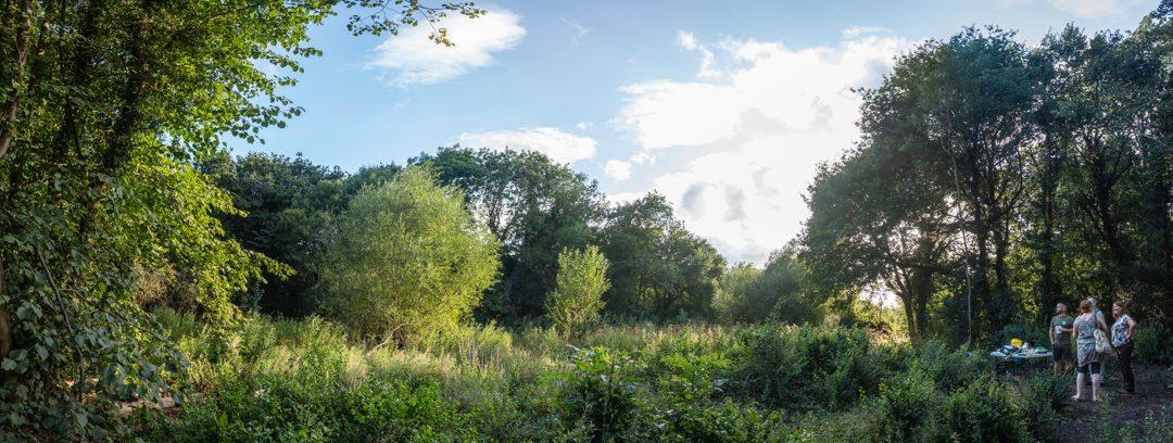Highlighting the Boles Meadow area